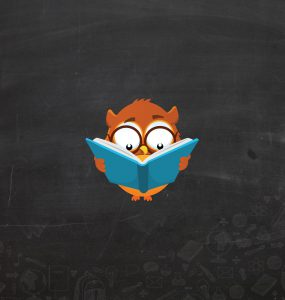 "Classroom project ""Owls"" - Presentation"